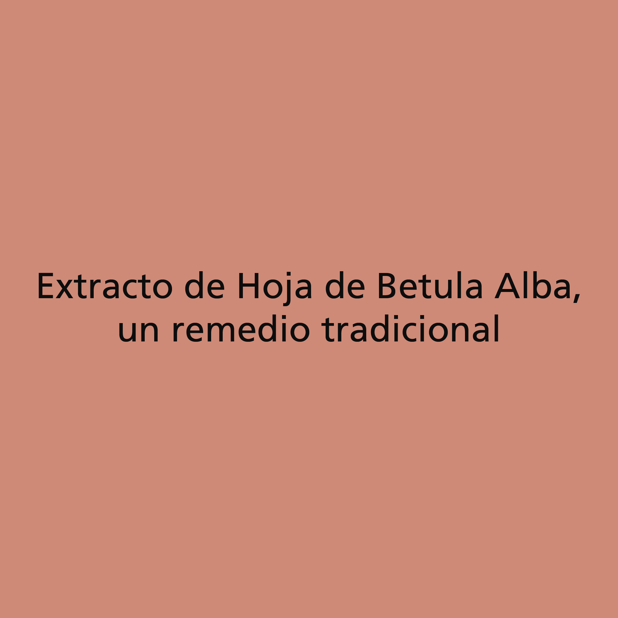 Hoja de Betula Alba
